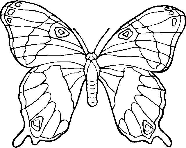 Gif gratis free animated gifs papillon wallpaper cover - Dessins papillons ...